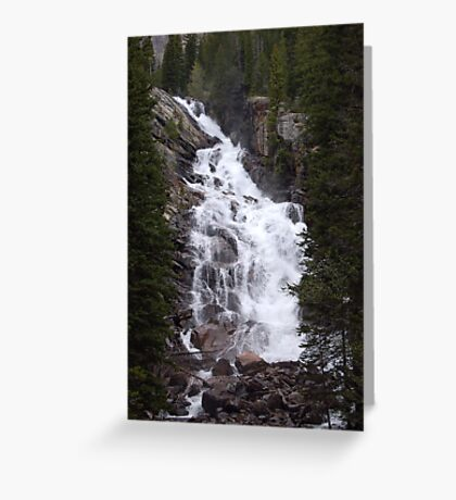 Cascading Glory Greeting Card