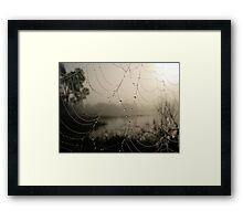Spider's Morning Framed Print