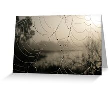 Spider's Morning Greeting Card