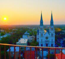 Savannah Sunrise by Roland Pozo