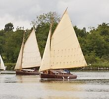 Norfolk Wherry Race by Alex Wagner