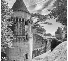 BW France Chateau de Losse by Steven House