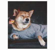 Dog in a sweater T-Shirt