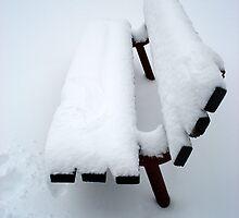 Snowy Bench by PPPhotoArt