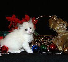 Christmas Gift by SLKensinger