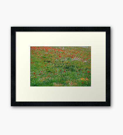 C'on Vincent Framed Print