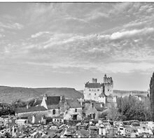 BW France Chateau Beynac by Steven House