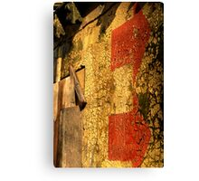 This Way to Urban Decay Canvas Print