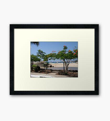 Galapagos Framed Print