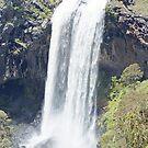 Ebor Falls  ( Lower Falls) by Derek Kentwell