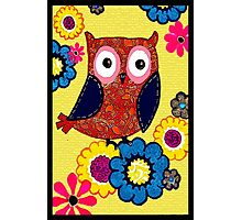 Patch work owl Photographic Print