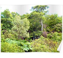 Dunvegan Castle Gardens Poster