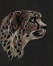 Cheetah Magic by dimarie