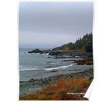 Kings Cove, Newfoundland Poster