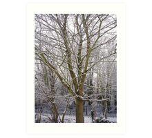 winter coat Art Print