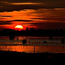 Sunset over the Fens by Hertsman