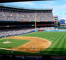 Yankee Stadium by Mike Shin