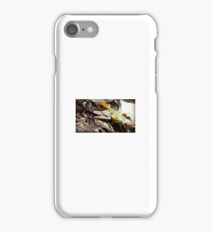 Yellow Sea Snail iPhone Case/Skin