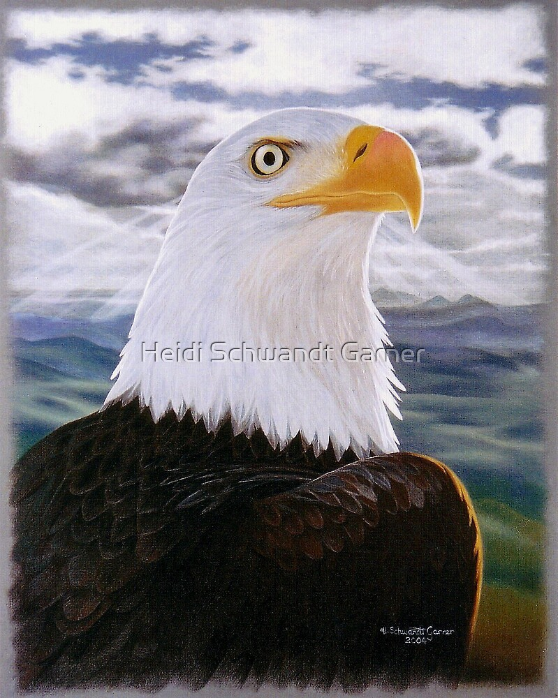 Shining Eagle by Heidi Schwandt Garner