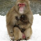 Mother and Child in the snow by Grem