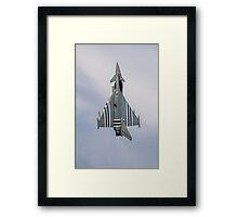 Reaching For The Sky Framed Print