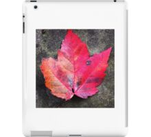 Red maple leaf iPad Case/Skin