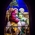 A Wonderful Window  by Robert Kelch, M.D.