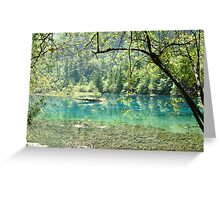 Emerald Wonderland Greeting Card