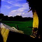 just a hole in the fence by David Donio