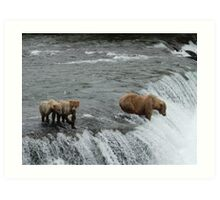 Fishing for the cubs Art Print
