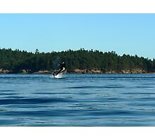 Breaching Orca Photographic Print