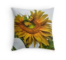 Beauty before the Harvast Throw Pillow