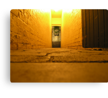 another door another world Canvas Print