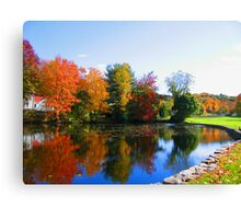 Fall in New York photography Canvas Print