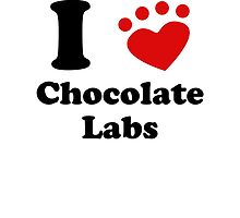 I Heart Chocolate Labs by kwg2200