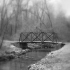 take the bridge by David Donio