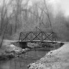 take the bridge by David Donio