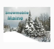 Snowmobile Maine by Gene Cyr