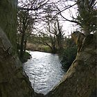 a liitle riverbend by daantjedubbledutch
