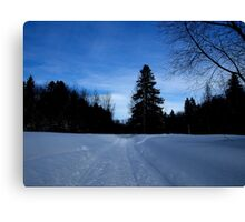 NC   Once upon a winter Canvas Print
