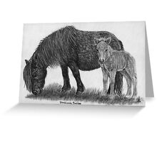 Shetland ponies - mare and foal Greeting Card