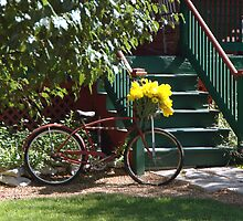 Bikebasket Flowers by Jim Caldwell