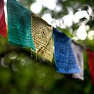 Tibetan Buddhist Prayer Flags by DJ Fortune