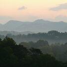 Fog in the Mountains by Sherri Hamilton