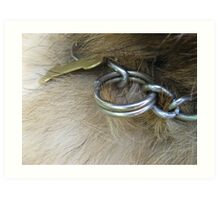 DOG COLLAR  Art Print