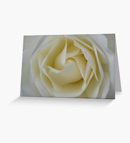 Cream Swirl - JUSTART © Greeting Card