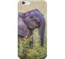 I Nose You're There iPhone Case/Skin