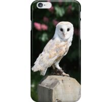 Barn owl on a fence post iPhone Case/Skin