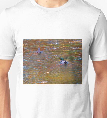 Enchanted Pond V   (1430118843VA) Unisex T-Shirt