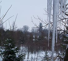 February Icicles by Aramses